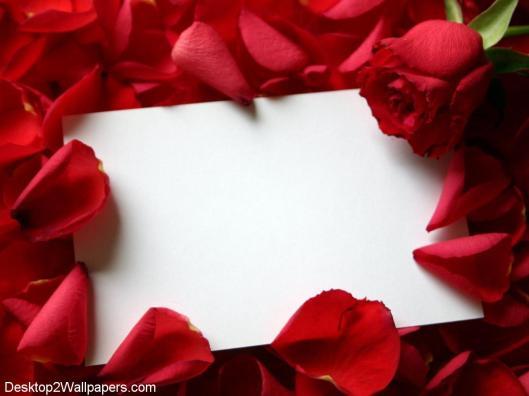 Roses-Love-Letter-1
