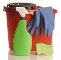 spray bottle gloves bucket sponge chores